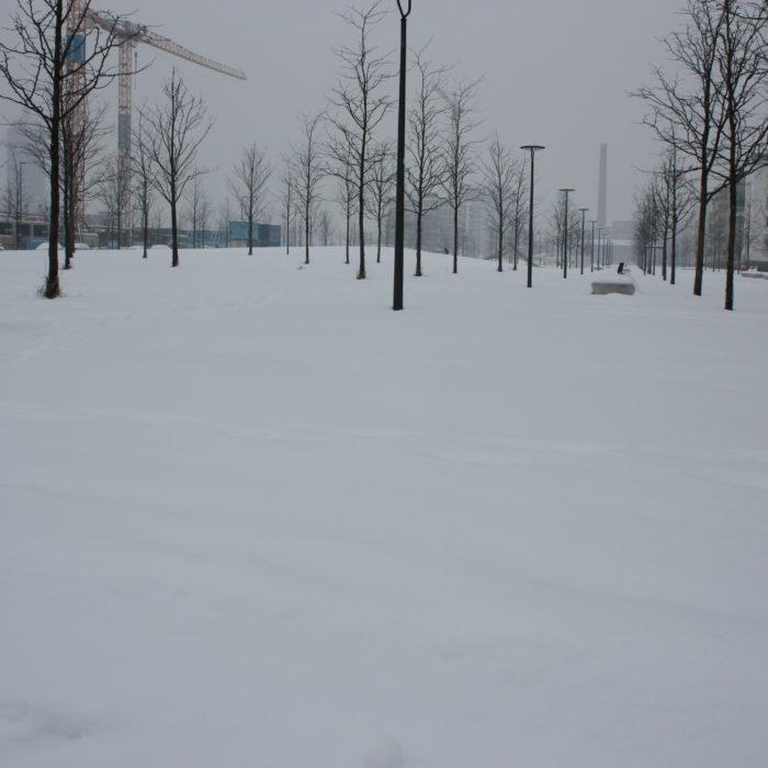 Neubaugebiet Arnulfpark 2010